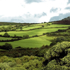 Terrain Of Dartmoor, Devon