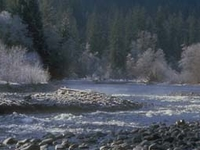 Hoh River