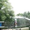The Hortus Botanicus