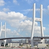 The Nanpu Bridge