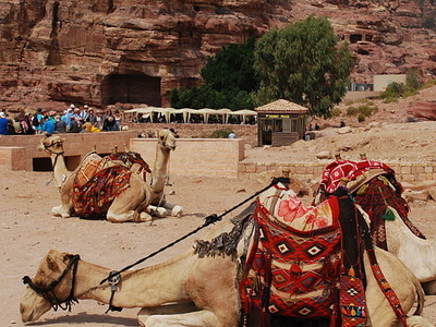 The Petra Archaeological Park Jordan