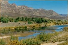 The River Draa