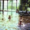 Thermalbath - Hungary