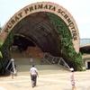 The Schmutzer Primate Centre, Jakarta