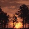 Thung Salaeng Luang National Park