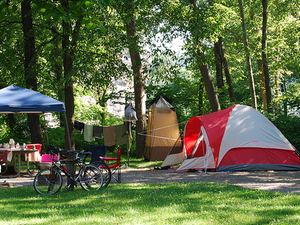 Timber Camp Group Campsite