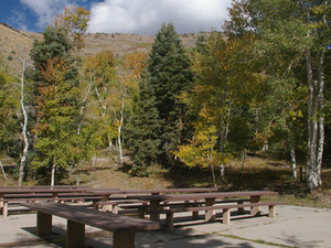 Timber Creek Campground