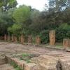 Roman Ruins Of Tipaza