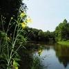 Tippecanoe River State Park