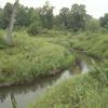 Tongue River