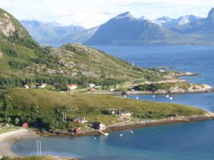 Lurøy