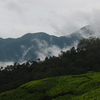 Top Station - Munnar