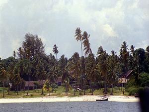 Mafia Island