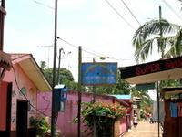 Tortuguero