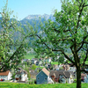 Tourist Attractions In Eschen