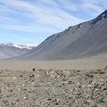 Valles Secos de McMurdo Atractivos Turísticos - Turismo en la Antártida