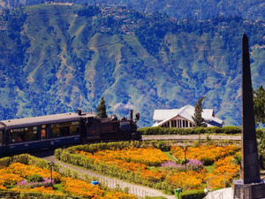 5 Days Darjeeling & Gangtok Tour Package !! Photos