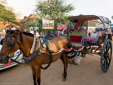 Transport In Bagan - Myanmar