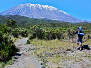 Trekking Mount Kilimanjaro Photos