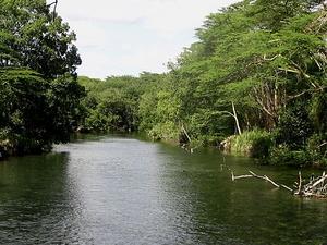 Tsavo River