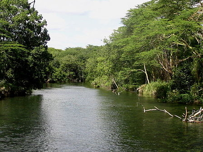 Tsavo River