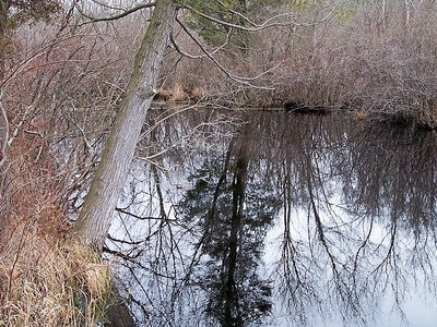 Tuckahoe River