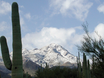 Tucson Mountains