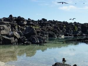 Galapagos Island Hopping Photos