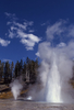 Turban Geyser - Yellowstone - USA