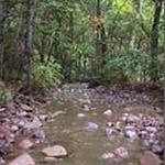 Turkey Creek Trail