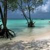 Turtle Island - Andaman
