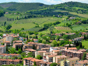 All Tuscany In One Day Wine Tour Photos