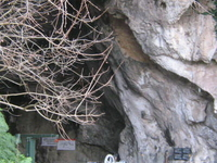 Pertosa Caves