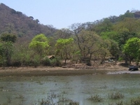 Elephanta Island