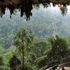 Niah National Park