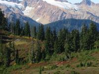 Twin Sisters Mountain