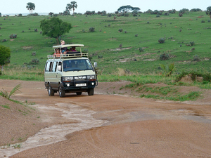 9 Days Uganda Wildlife Safari Photos