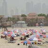 Umbrellas At Jumeirah In Dubai