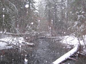 Union Creek