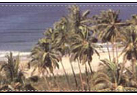 Velneshwar Beach