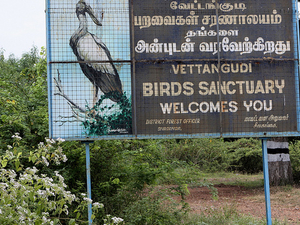 Vettangudi Bird Sanctuary