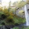 View Elowah Falls In Mt. Hood Forest