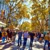 View Las Ramblas Main Street - Barcelona