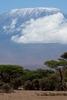 View Mount Kilimanjaro From Tanzania