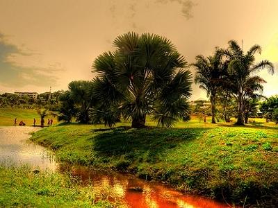 View New Caledonia