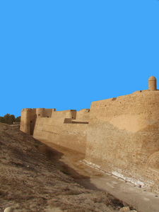 View Of Bahrain Fort