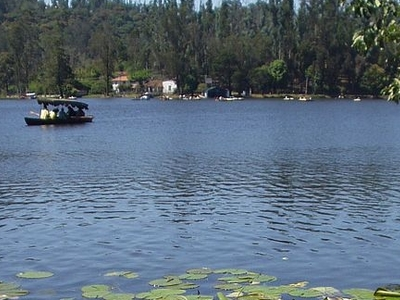 Kodaikanal Lake