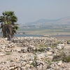 View Of Megiddo