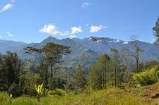 View Papua New Guinea Landscape