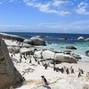 View Penguin Beach - Boulders SA